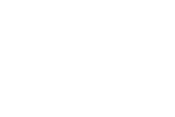 Jesper van den Boogert - Star Wars